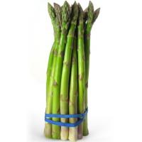 China Supply top grade fresh asparagus wholesale