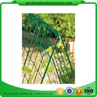 "China Deluxe Garden Plant Trellis For Cucumbers , Steel Cucumber Garden Trellis Each side is 32"" W x 48"" H wholesale"