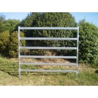 China 40x40 1.8M x 2.1M Heavy Duty Cattle Corral Panels For Sale 6 Oval Bars 30*60mm wholesale