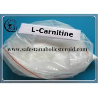 China 99% Purity L-Carnitine Fat Loss Hormones 541-15-1 L-Carnitine For Adult wholesale