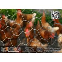 China Hexagonal Chicken Wire Mesh wholesale