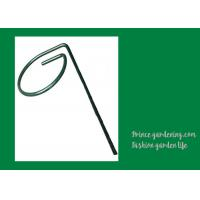 China Metal Garden Plant Supports Length 18 inches Width 0.98 inches color green Plant support type Stake wholesale