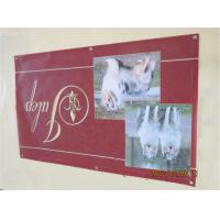 China Indoor Vinyl Customized Banners For Party For Store Displays Seamless wholesale