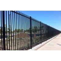 China 2.4m X 2.4m SHS 65mm Tube Black Garrison Garden Fence Panels Security Spear Top Tubular Steel Fencing wholesale