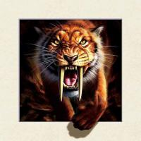China Strong 5d Deep Effect Lenticular Photo Printing 40x40cm Picture Tiger / Wolf wholesale
