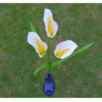 China Solar Flower Lights - Outdoor Waterproof LED Flowers Calla Lily for Garden, Path, Landscape, Patio, and Lawn wholesale