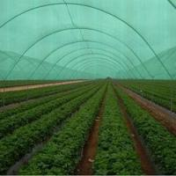 Quality High Density Polyethylene HDPE Dark Black Agriculture Shade Net with UV for sale