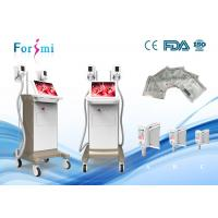 China strawberry lipo laser slimming machine for sale -15 Celsius lower temperature 15 inch screen on sale