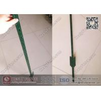 China 4' length T Studded Steel Post with Spade Green Bitumen Coated | China T Post Exporter wholesale