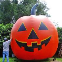 China Inflatable christmas / halloween / inflatable festival decoration / inflatable giant pumpkin wholesale