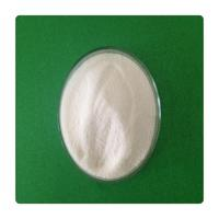 nandrolone for horses