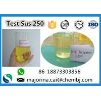 China Testosterone Sustanon 250 / Test Sus 250 Mix Test Steroids Yellow Oils wholesale