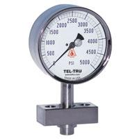Isolated diaphragm antivibration pressure gauge