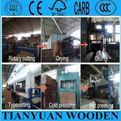 Qingdao Gold Luck International Trade Co., Ltd.