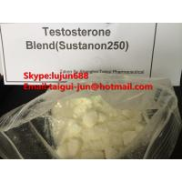 Quality Muscle Testosterone Blend Anabolic Steroid Hormones Sustanon 250  Testosterone Sustanon for sale