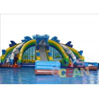 China Sea Ocean Theme Inflatable Water Park Dolphin Slide With Big Swimming Pool wholesale