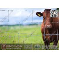 China Cattle Fence   Field Fencing   Grassland Fence   China Supplier wholesale