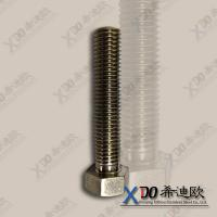 China China Alloy20 high quality stainless steel hex bolt  full/half thread wholesale