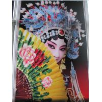 China 1.8M Eco Solvent Double Side Printer with Epson DX7 head for flex banner wholesale