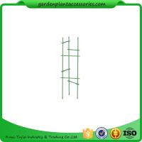 """China Durable Steel Garden Plant Supports / Grow Through Plant Supports Plastic Coated 11"""" W x 35"""" H overall wholesale"""