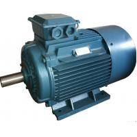 China GOST Standard y2 3 Phase 4 Pole Induction Motor / Three Phase Electric Motor on sale