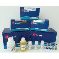 China Plant RNA Extraction Kit 50 Preps / 100 Preps Fast Kit For Isolation Of RNA From Plants wholesale