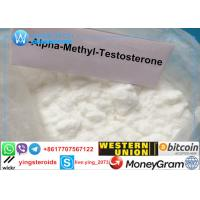 USP Steroid Powder 17-Alpha-Methyl-Testosterone Methyltestosterone 65-04-3