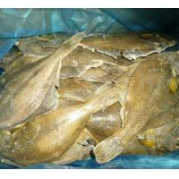 China Wholesale Alaska waters frozen seafood frozen yellow fin sole fish for japanese sushi food good quality wholesale