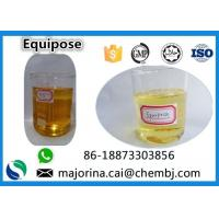 China Equipose /Boldenone Undecylenate/EQ  Injectable SteroidsCAS 13103-34-9 wholesale