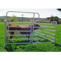 Buy cheap Heavy Duty Galvanized Corral Yard Cattle Panel / 40x70mm Bulk for Livestock from wholesalers