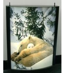 China Waterproof Light Box Poster Printing , Backlit Film Printing on sale