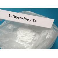 China CAS 51-48-9 Oral Injectable Anabolic Steroid White Powder T4 / L-Thyroxine For treating hypothyroidism wholesale