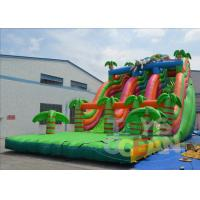 Quality Inflatable Pool Water Slides For Adults / Fun Garden Water Slides CE for sale
