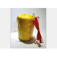 China Colorful Twisted Polypropylene 31.5KGF Chili Tomato Tying Twine on sale