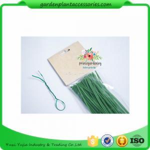 China Green Tree Climbing Garden Plant Ties , Plastic Tree Support Ties wholesale