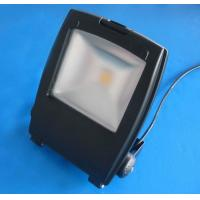 China Aluminum 50W LED Outside Flood Lights Bridgelux, Epistar outdoor led floodlight for Garden wholesale
