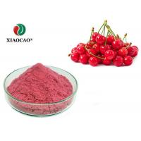 China Fruit Product Fresh Food Extract Instant Cherry Juice Powder Food Grade wholesale