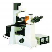 China Fluorescence Microscopy Biological Microscopes For Pharmacy / Disease Prevent wholesale
