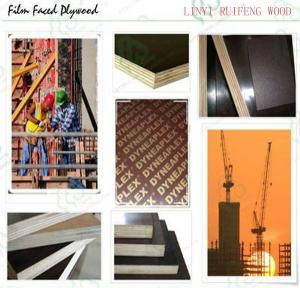 China construction use shuttering plywood wholesale