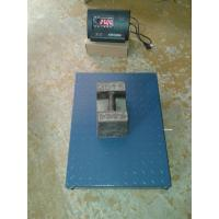 China Wireless flat platform scale/LZPT1-W/Alloy steel/LED/0-50m on sale