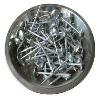 China umbrella head roofing nails  wholesale