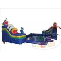 China Outdoor Summer Mobile Inflatable Water Park , Large Customized Inflatable Swimming Slides wholesale