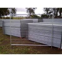 China Temporary Fencing 2.4 x 2.1M 10 Panels Only Building Construction Site wholesale