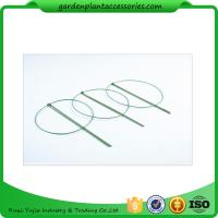 China 3 Rings Green Garden Plant Supports , Circular Plant Supports Plastic Coated wholesale