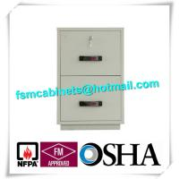 China Waterproof Fire Resistant Filing Cabinets , Fire Safe File Cabinet 2 Drawer wholesale
