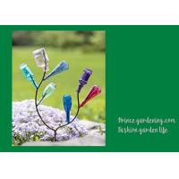 China Decorative Garden Plant Accessories , Mini Steel Garden Bottle Tree wholesale