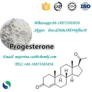 China Progesterone Female Sex Powder Increasing Hormones 98% Purity CAS57-83-0 wholesale
