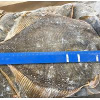Wholesale Alaska waters frozen seafood frozen yellow fin sole fish for japanese
