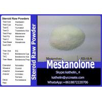 China Health And Fitness Steroid Raw Powder Mestanolone / Methylandrostanolone CAS No 521-11-9 wholesale