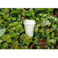 China Coffee 100% Compostable Paper Cups Customized Logo For Fast Food Restaurants wholesale